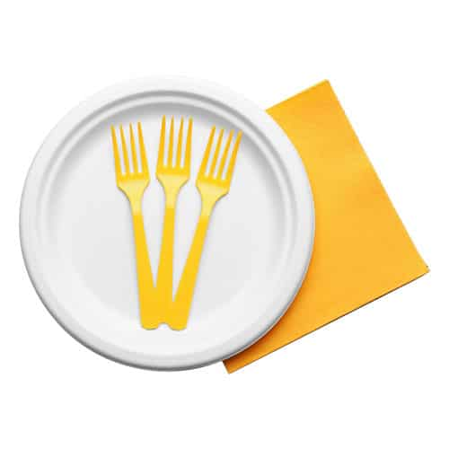 Plastic Silverware, Plates, and Napkins