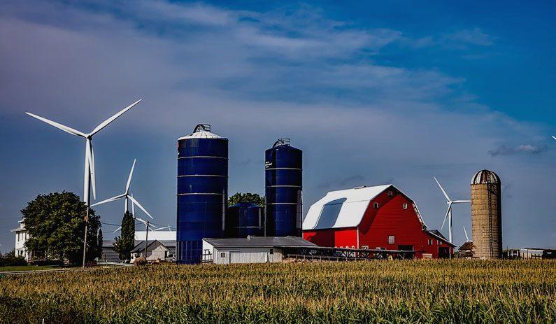 Farm Fresh Community