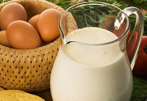 dairy-gofresh
