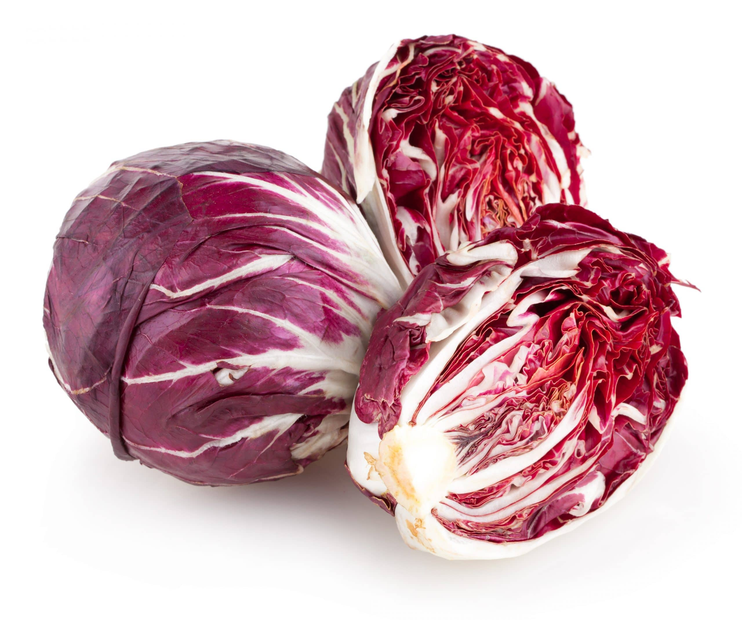 red cabbage radiccio isolated on white