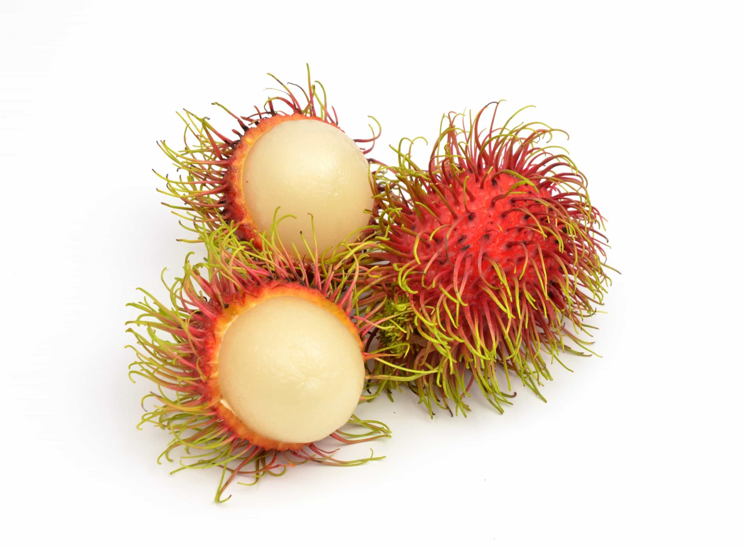 rambutan fruits isolated on white background