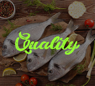 Seafood Quality
