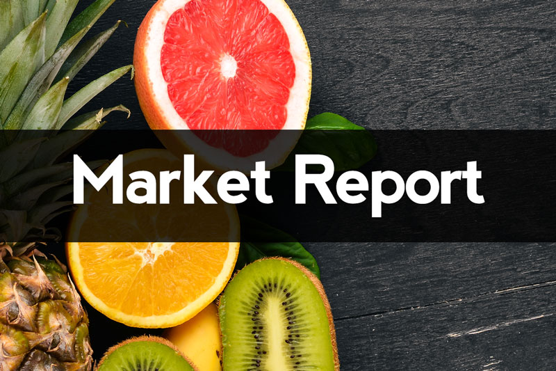 marketReport5