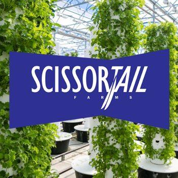 Scissortail Farms