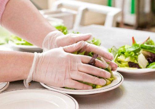 Food Preperation Gloves