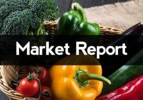 marketReport7
